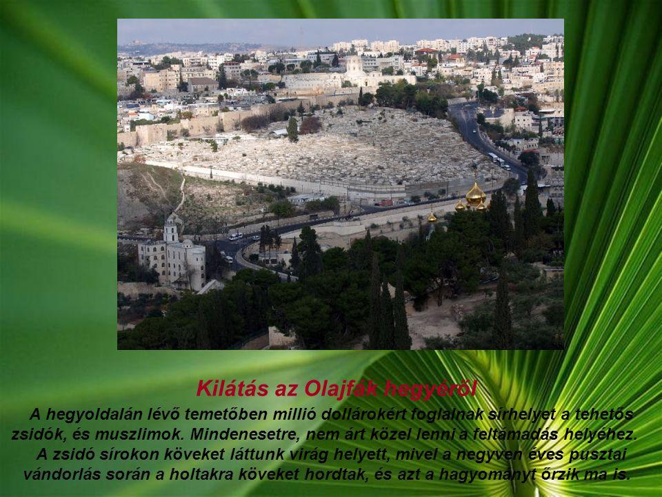 Kilátás az Olajfák hegyéről A hegyoldalán lévő temetőben millió dollárokért foglalnak sírhelyet a tehetős zsidók, és muszlimok.