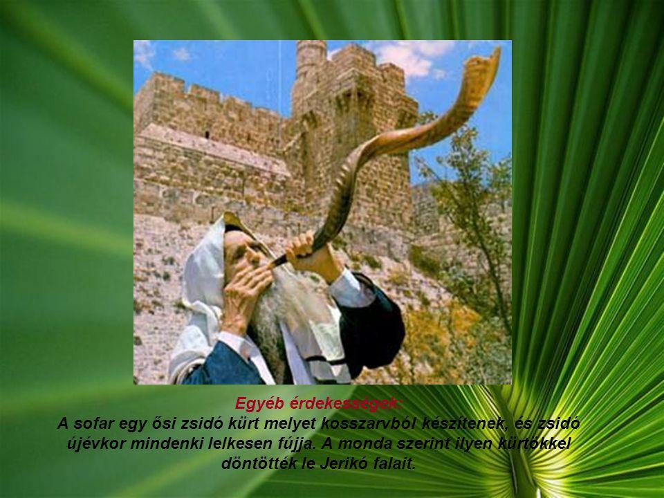 Egyéb érdekességek: A sofar egy ősi zsidó kürt melyet kosszarvból készítenek, és zsidó újévkor mindenki lelkesen fújja.