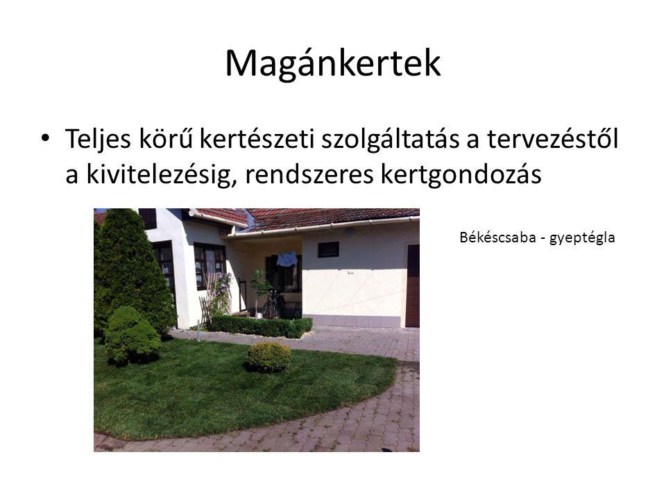 Magánkertek Teljes körű kertészeti szolgáltatás a tervezéstől a kivitelezésig, rendszeres kertgondozás.