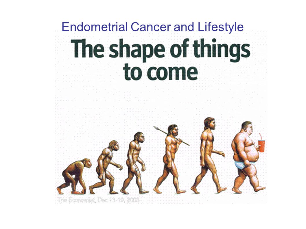 Endometrial Cancer and Lifestyle