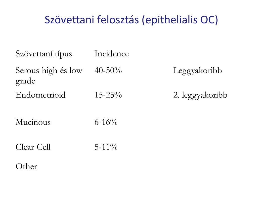 Szövettani felosztás (epithelialis OC)