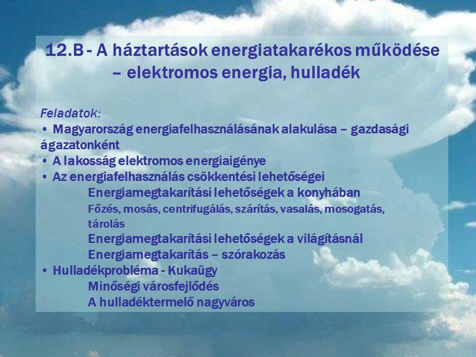 12. B - A háztartások energiatakarékos működése