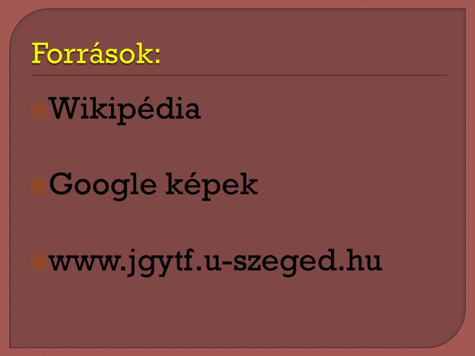 Források: Wikipédia Google képek www.jgytf.u-szeged.hu