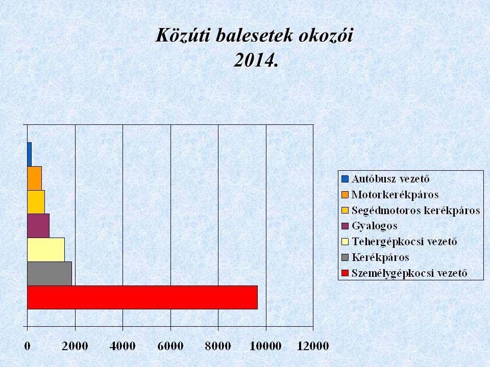 Közúti balesetek okozói 2014.