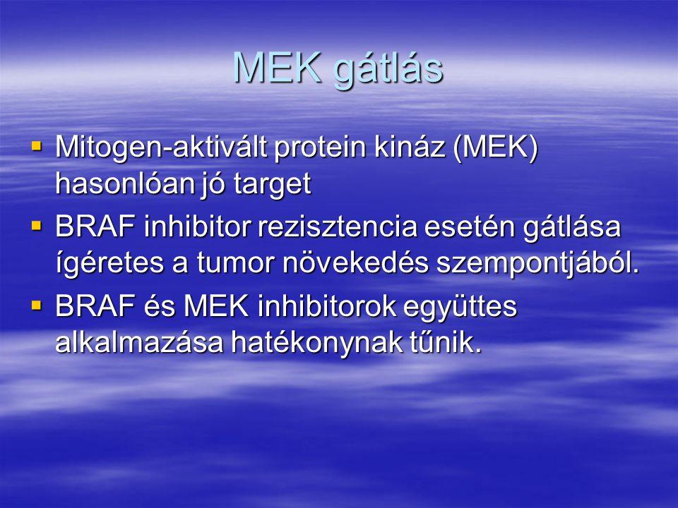 MEK gátlás Mitogen-aktivált protein kináz (MEK) hasonlóan jó target