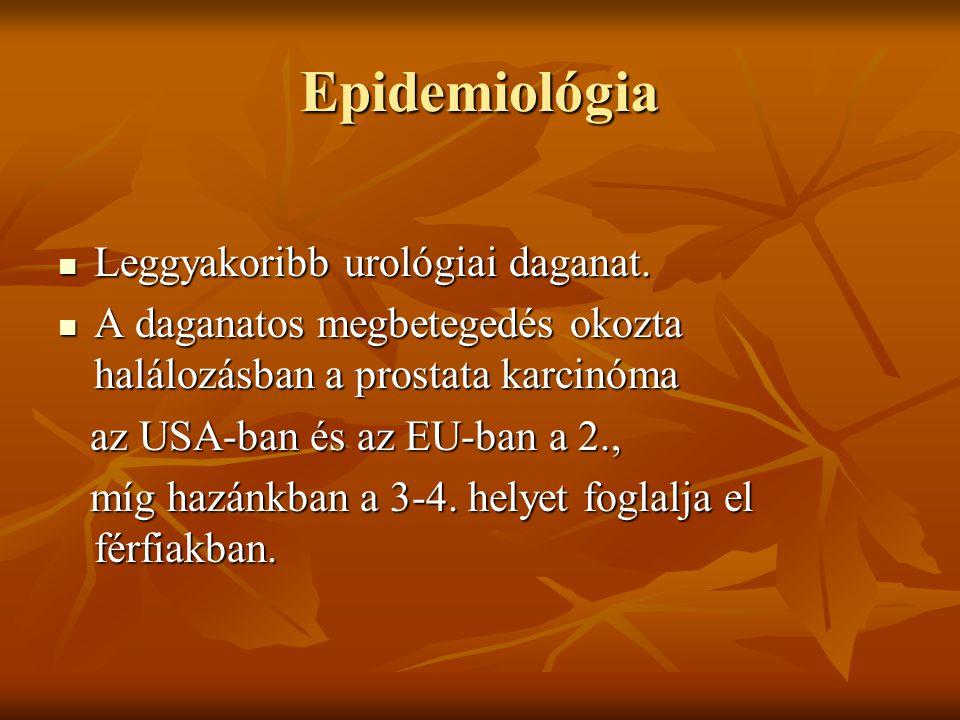 Epidemiológia Leggyakoribb urológiai daganat.