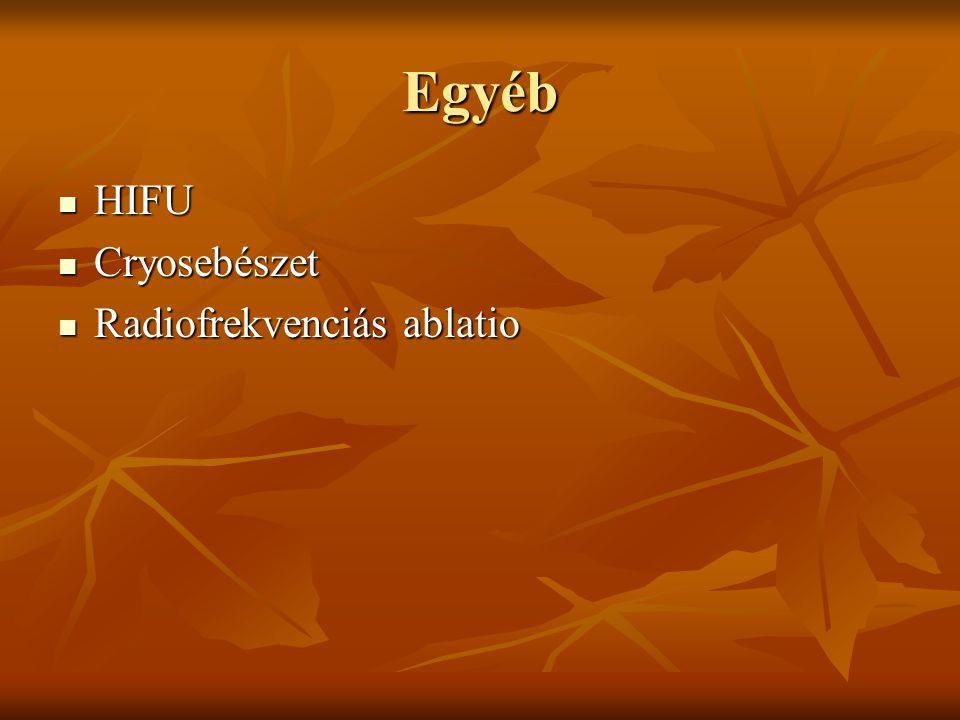 Egyéb HIFU Cryosebészet Radiofrekvenciás ablatio