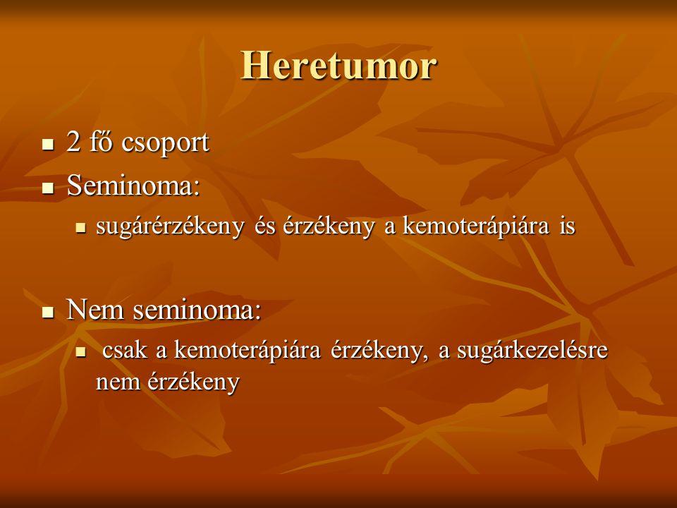 Heretumor 2 fő csoport Seminoma: Nem seminoma:
