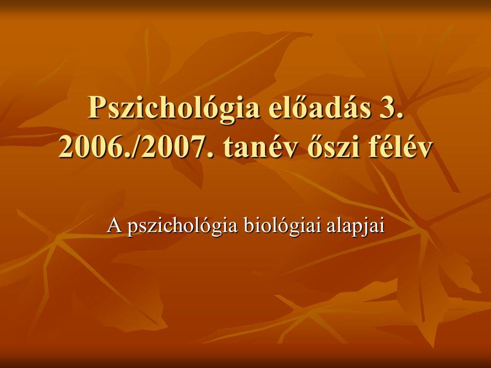 Pszichológia előadás 3. 2006./2007. tanév őszi félév