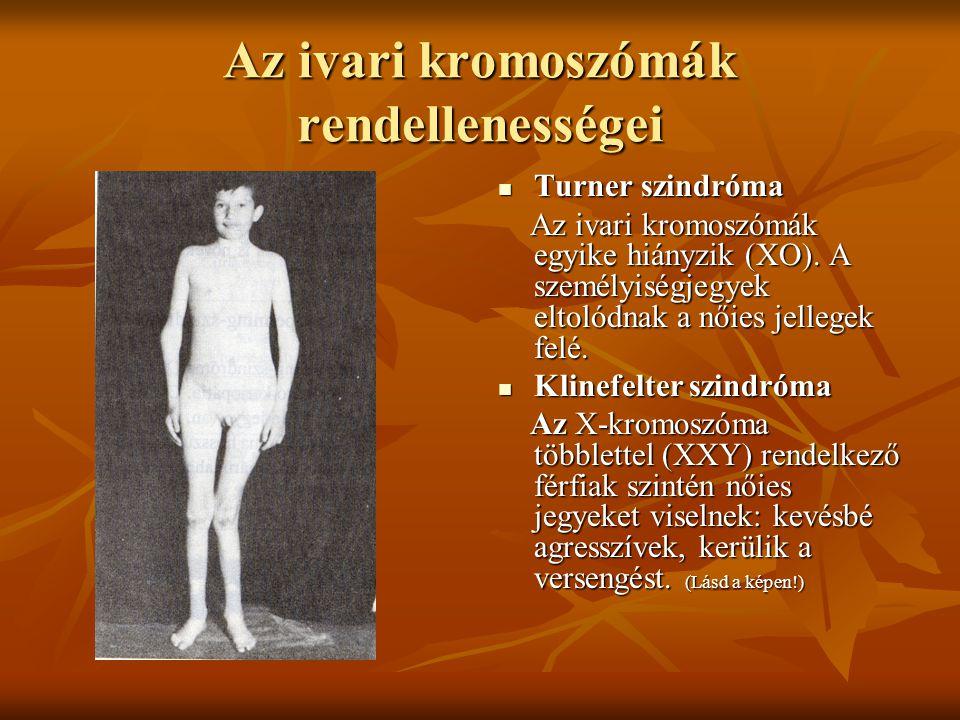 Az ivari kromoszómák rendellenességei