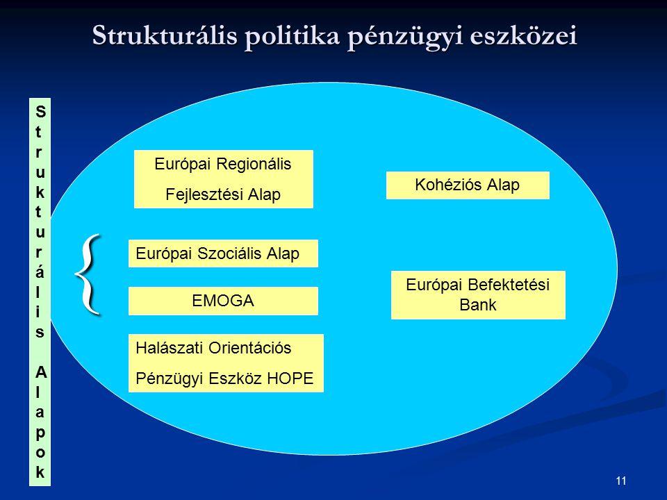 Strukturális politika pénzügyi eszközei