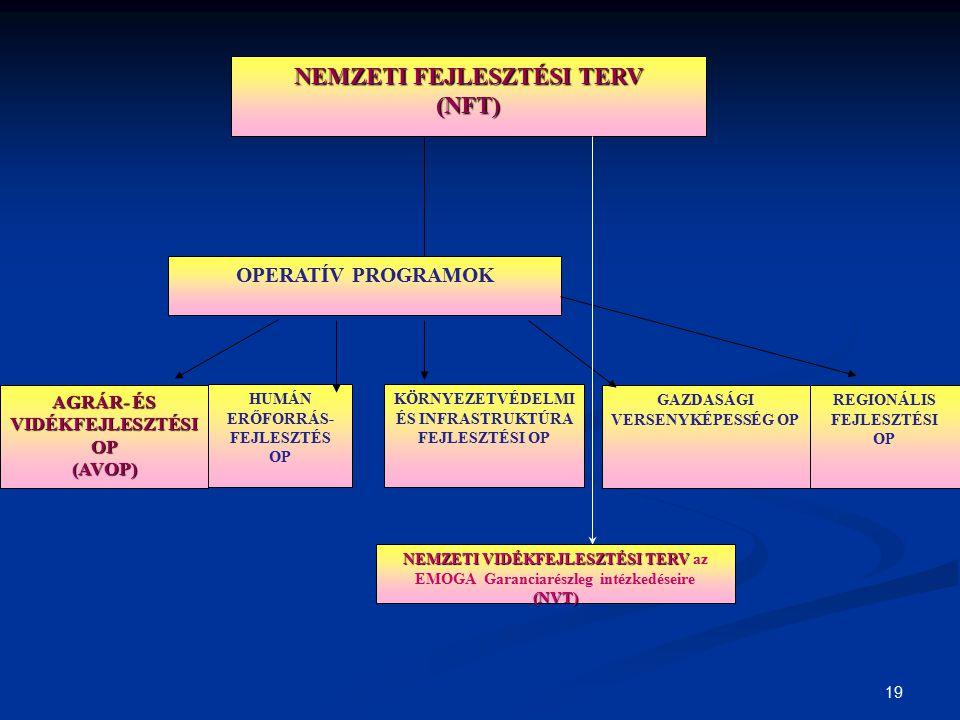 NEMZETI FEJLESZTÉSI TERV (NFT)