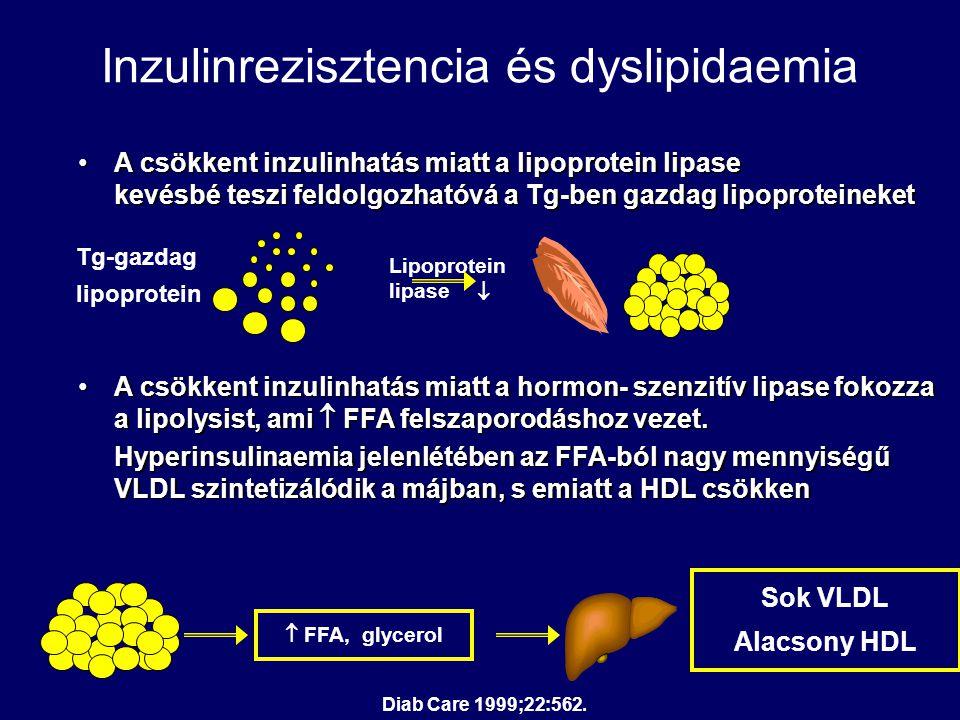 Inzulinrezisztencia és dyslipidaemia