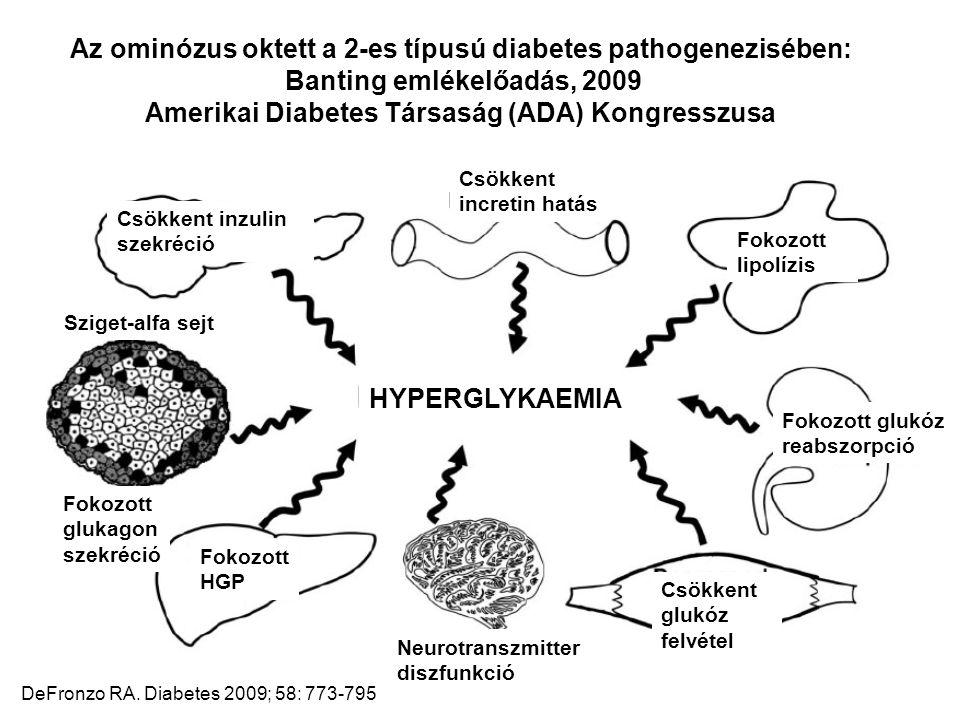 Az ominózus oktett a 2-es típusú diabetes pathogenezisében: