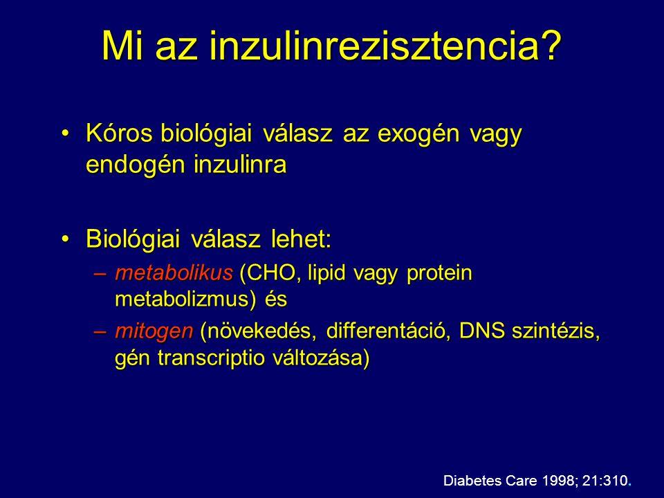 Mi az inzulinrezisztencia