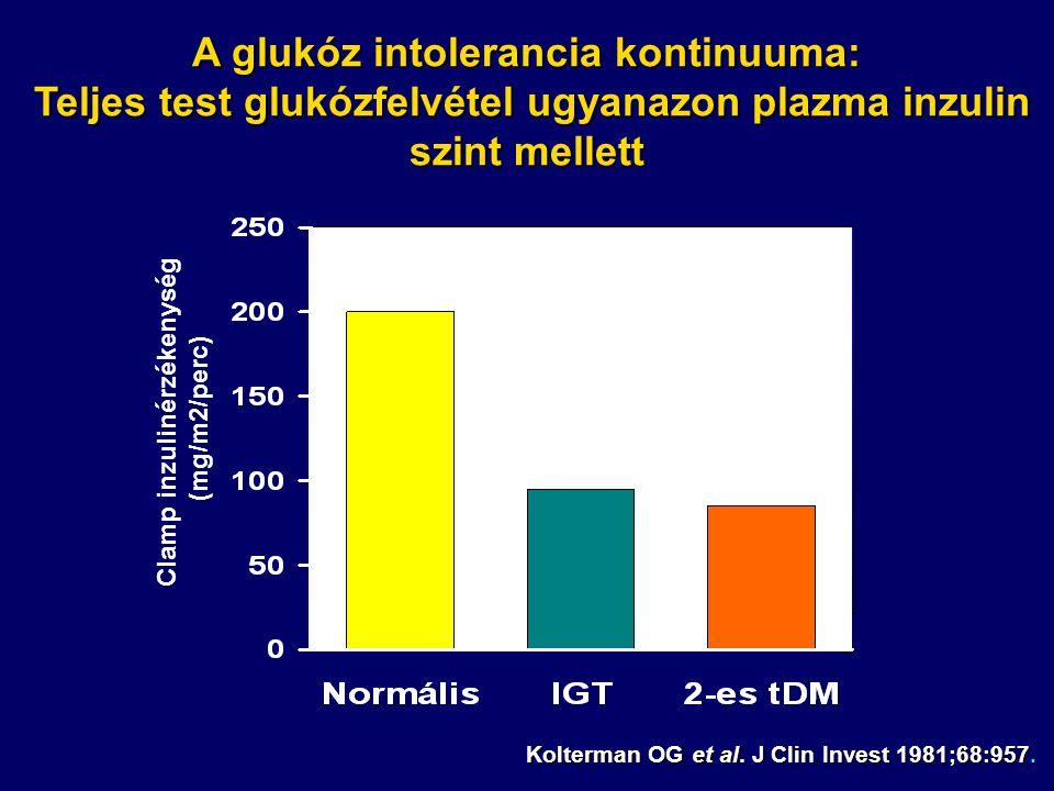 Clamp inzulinérzékenység