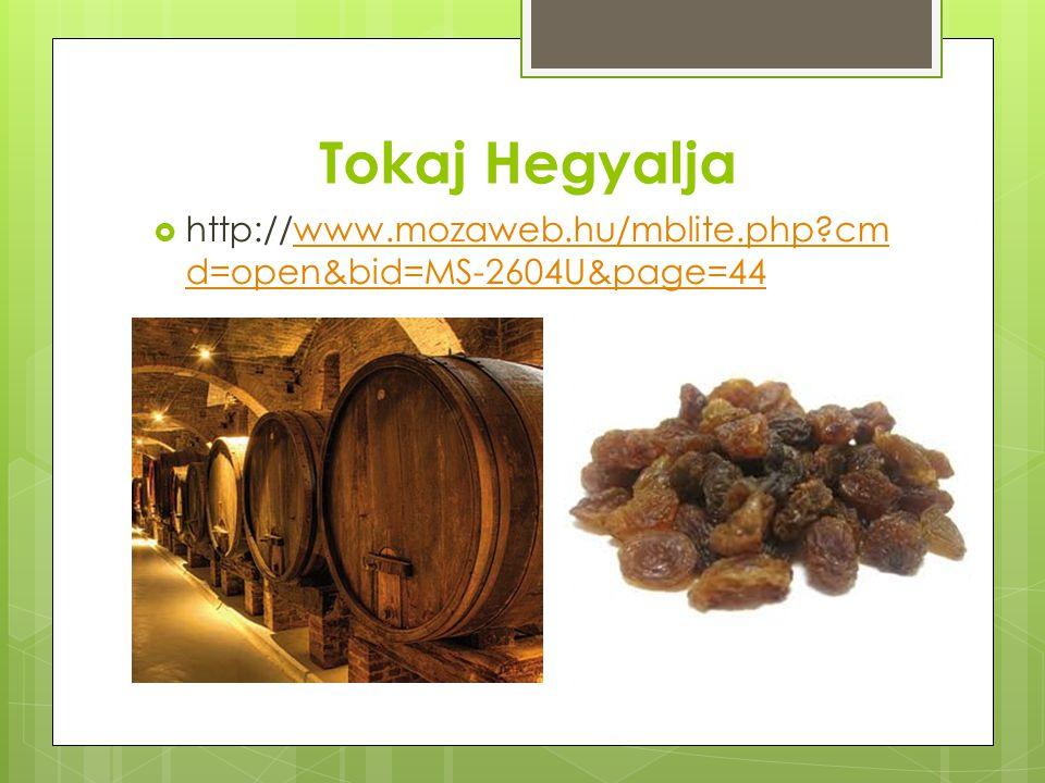 Tokaj Hegyalja http://www.mozaweb.hu/mblite.php cmd=open&bid=MS-2604U&page=44