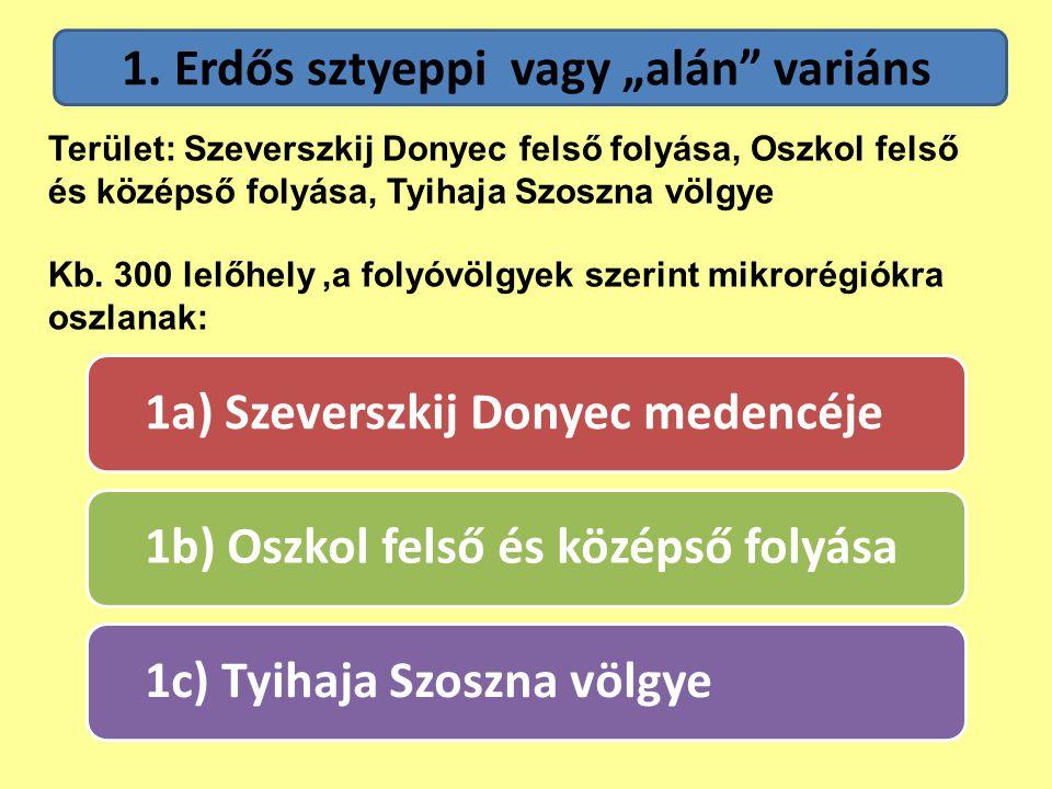 """1. Erdős sztyeppi vagy """"alán variáns"""