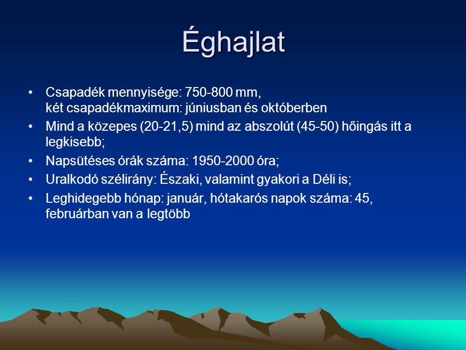 Éghajlat Csapadék mennyisége: 750-800 mm, két csapadékmaximum: júniusban és októberben.