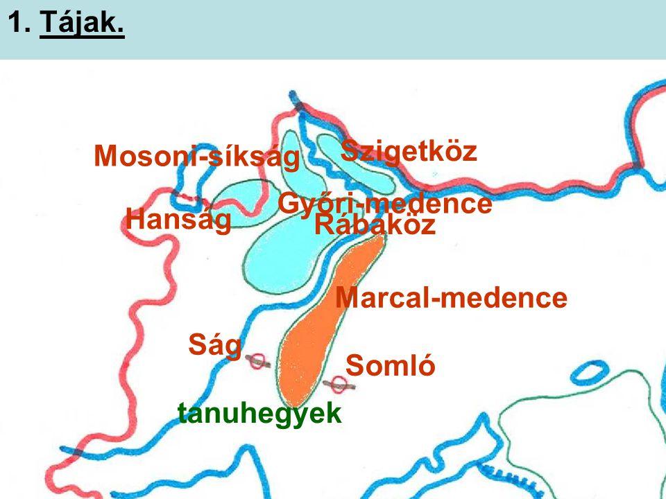 1. Tájak. Szigetköz Mosoni-síkság Győri-medence Hanság Rábaköz Marcal-medence Ság Somló tanuhegyek