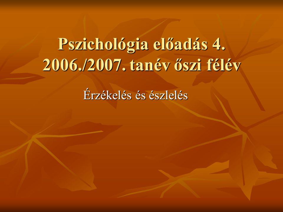 Pszichológia előadás 4. 2006./2007. tanév őszi félév