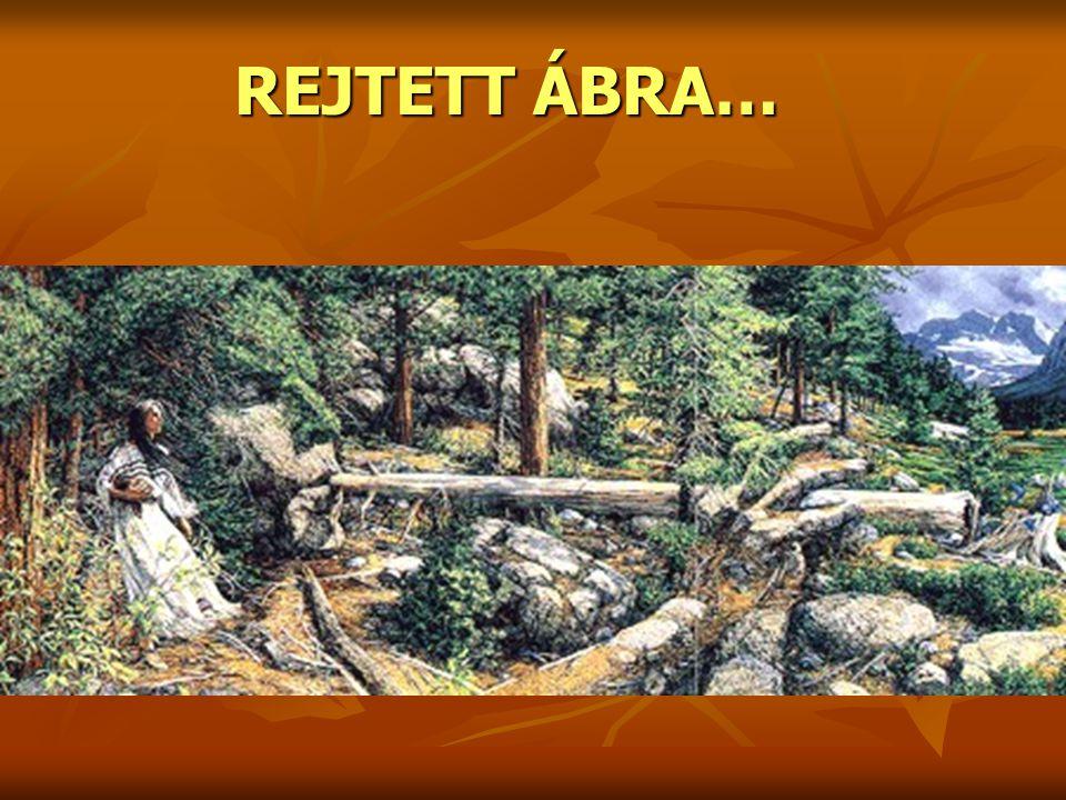 REJTETT ÁBRA…