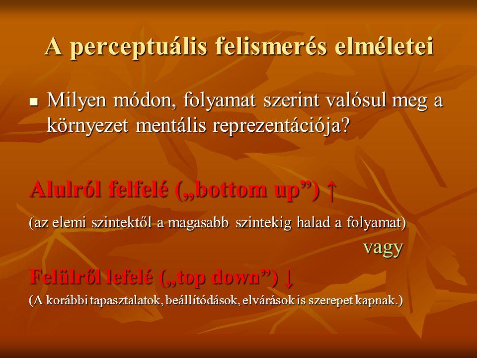 A perceptuális felismerés elméletei