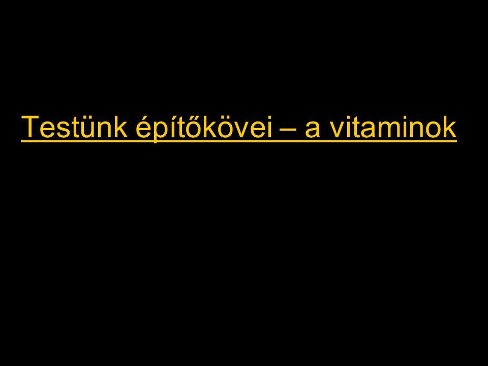 Testünk építőkövei – a vitaminok