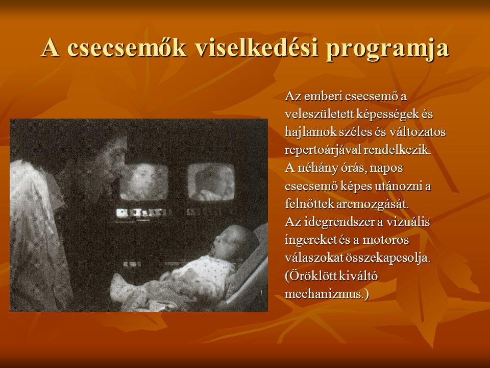 A csecsemők viselkedési programja