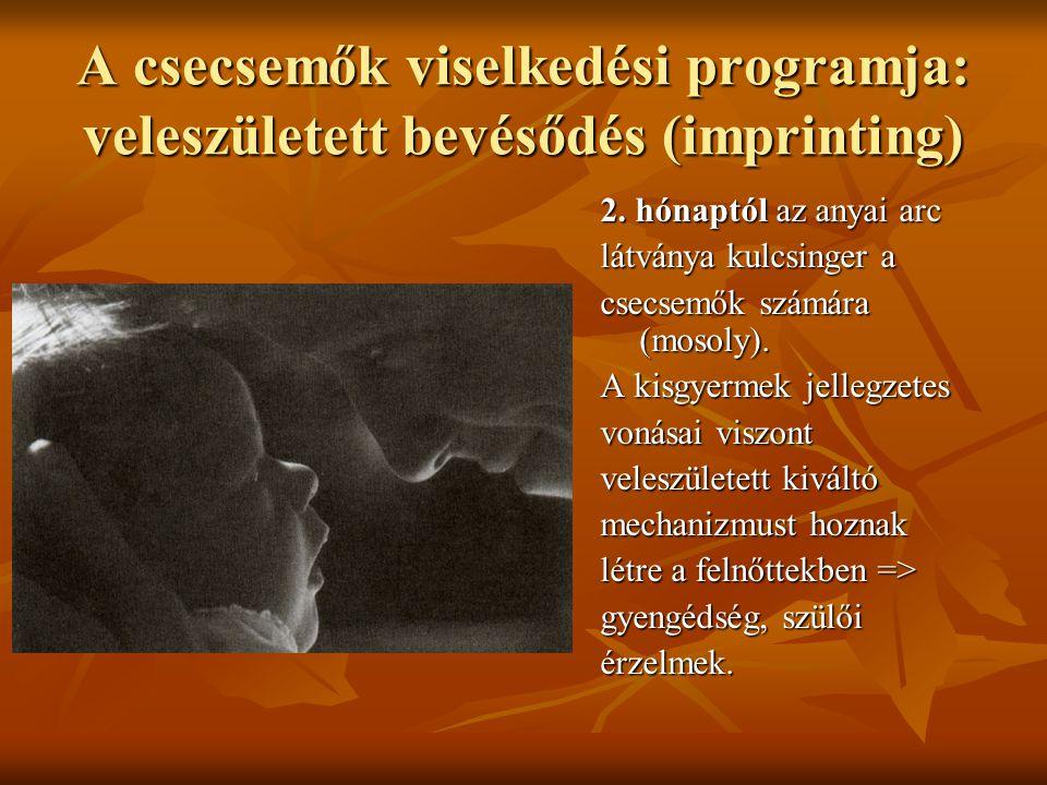 A csecsemők viselkedési programja: veleszületett bevésődés (imprinting)