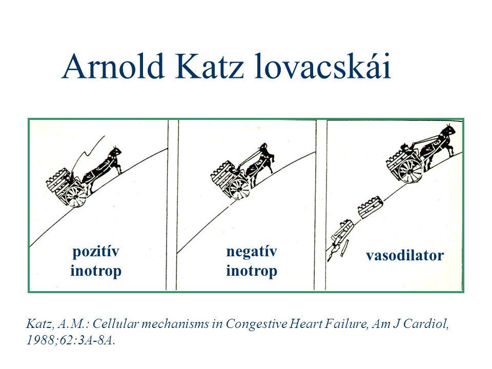 Arnold Katz lovacskái pozitív inotrop negatív inotrop vasodilator