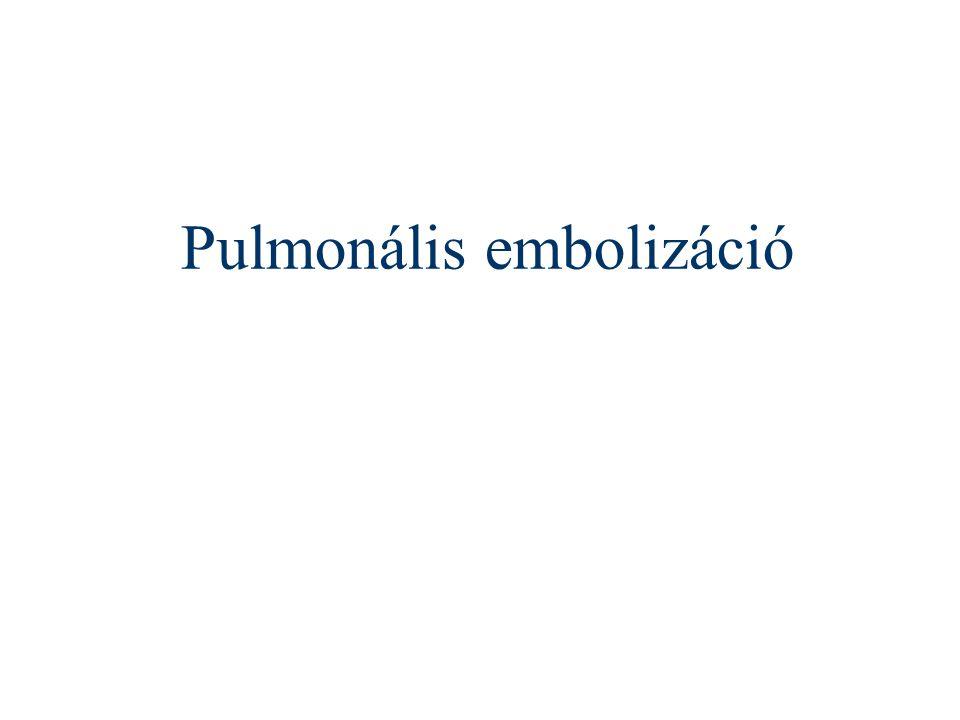 Pulmonális embolizáció