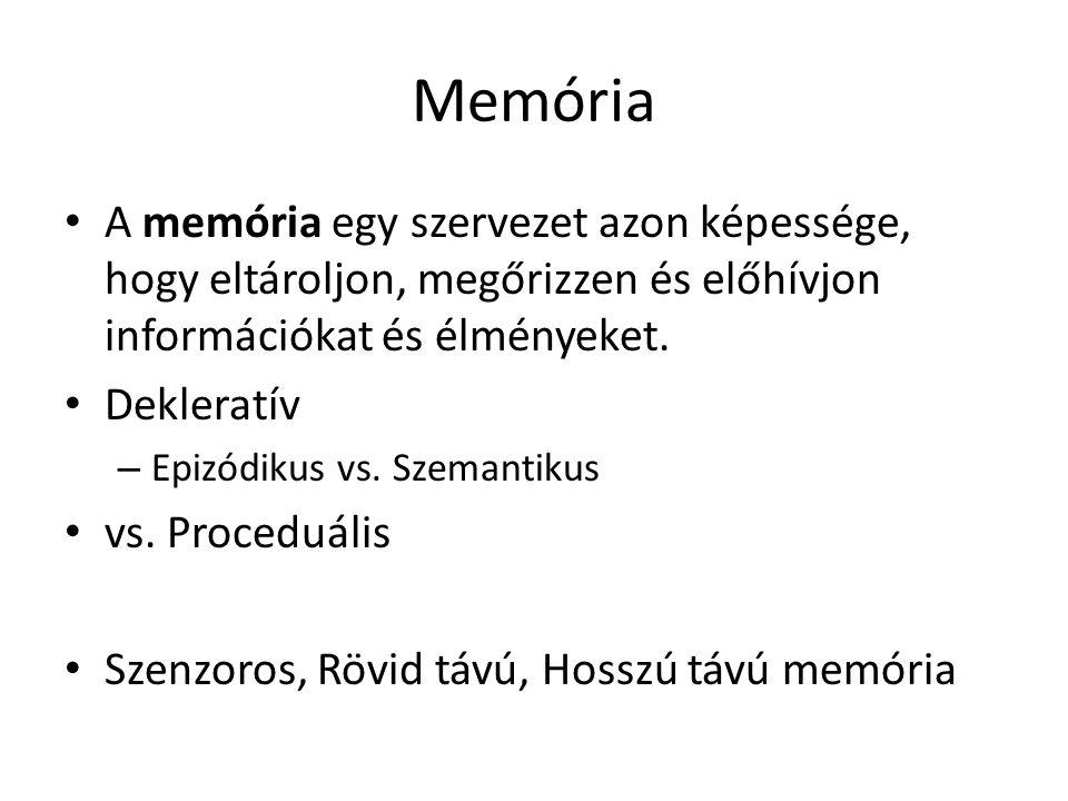 Memória A memória egy szervezet azon képessége, hogy eltároljon, megőrizzen és előhívjon információkat és élményeket.