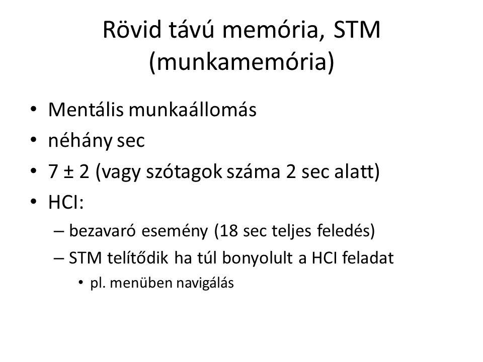 Rövid távú memória, STM (munkamemória)