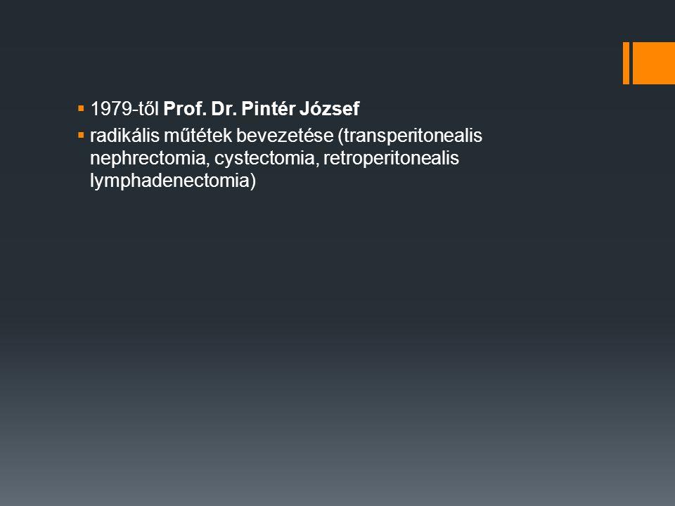 1979-től Prof. Dr. Pintér József