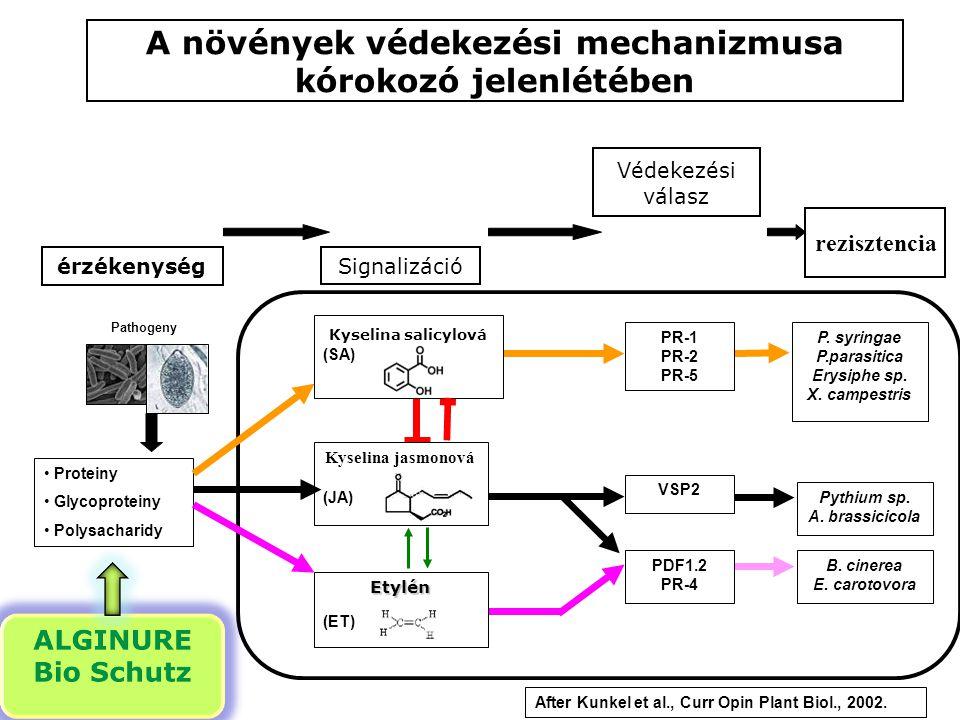 A növények védekezési mechanizmusa kórokozó jelenlétében