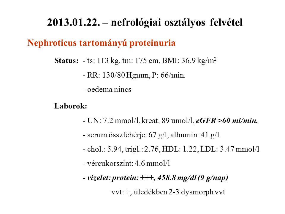 2013.01.22. – nefrológiai osztályos felvétel