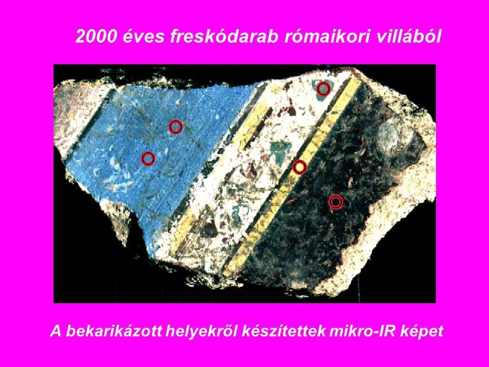 2000 éves freskódarab rómaikori villából