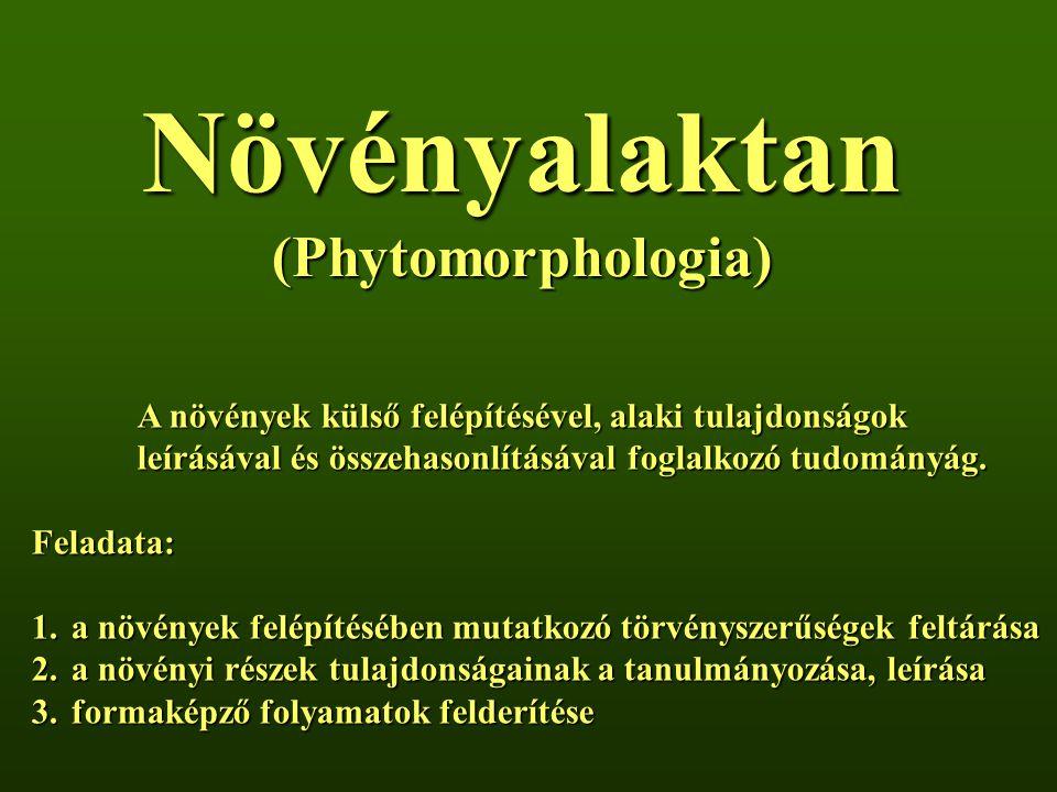 Növényalaktan (Phytomorphologia)