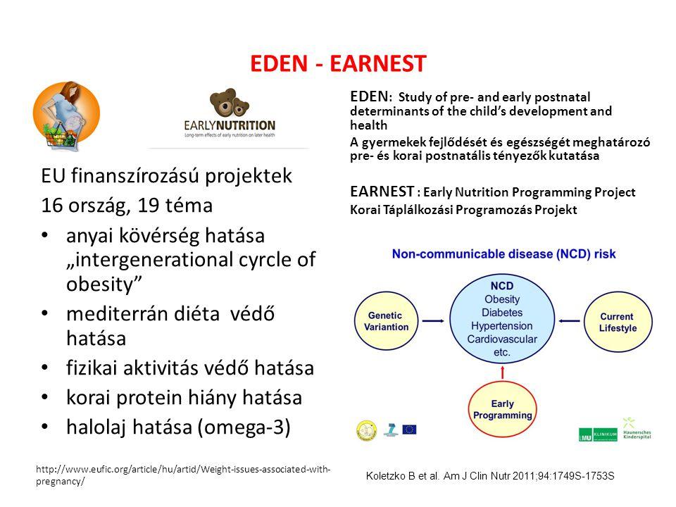 EDEN - EARNEST EU finanszírozású projektek 16 ország, 19 téma