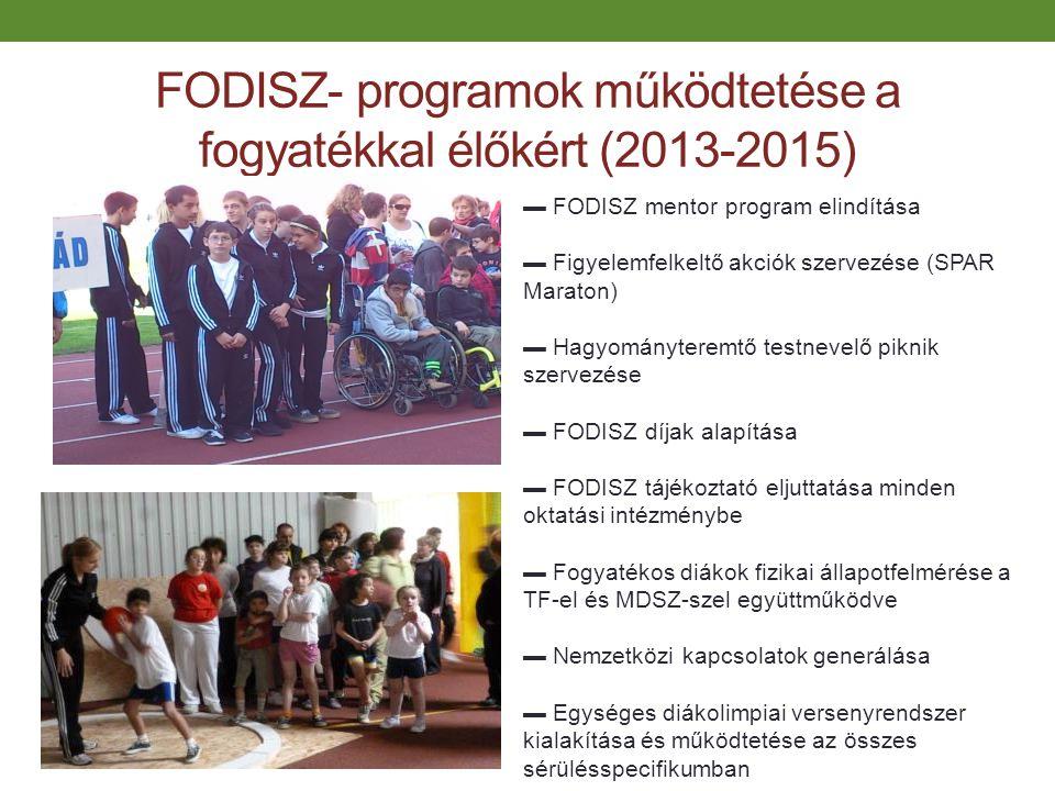 FODISZ- programok működtetése a fogyatékkal élőkért (2013-2015)