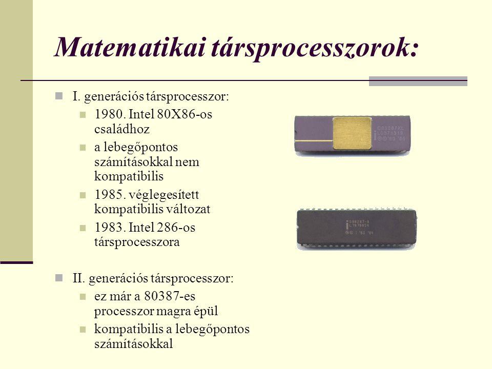 Matematikai társprocesszorok: