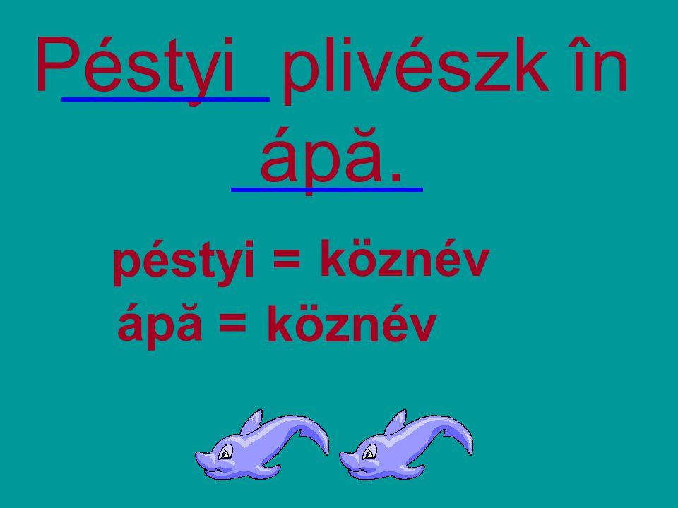 Péstyi plivészk în ápă. péstyi = köznév ápă = köznév