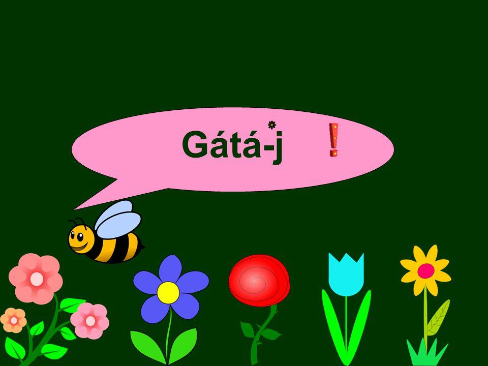 Gátá-j