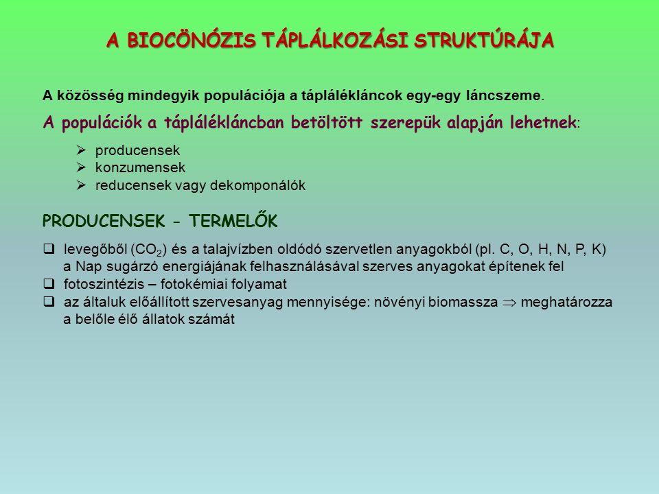 A BIOCÖNÓZIS TÁPLÁLKOZÁSI STRUKTÚRÁJA