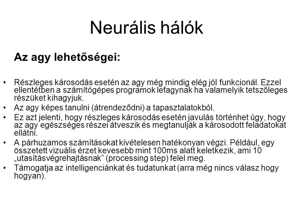 Neurális hálók Az agy lehetőségei: