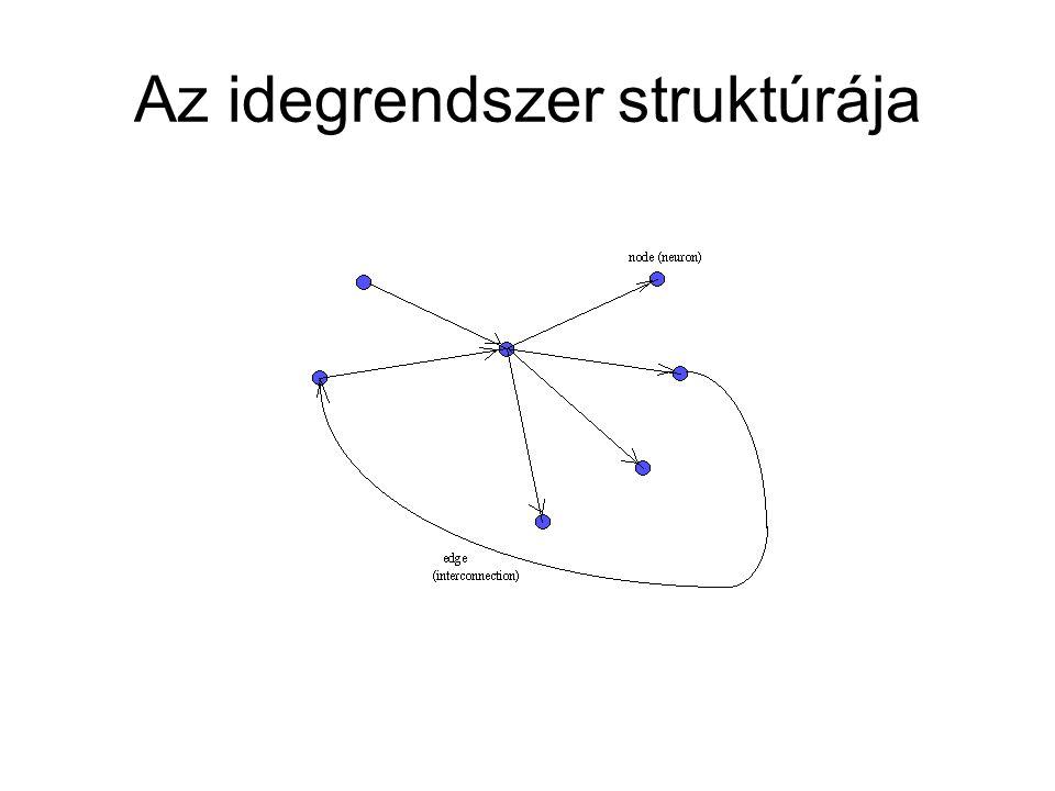 Az idegrendszer struktúrája