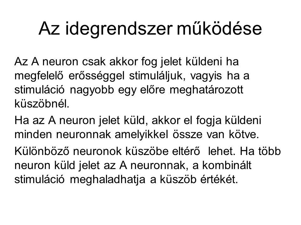 Az idegrendszer működése