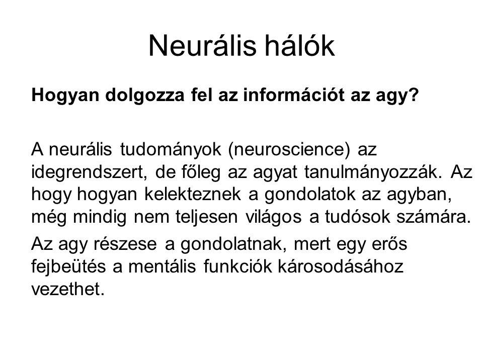 Neurális hálók Hogyan dolgozza fel az információt az agy
