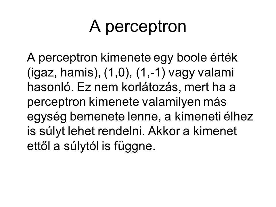 A perceptron